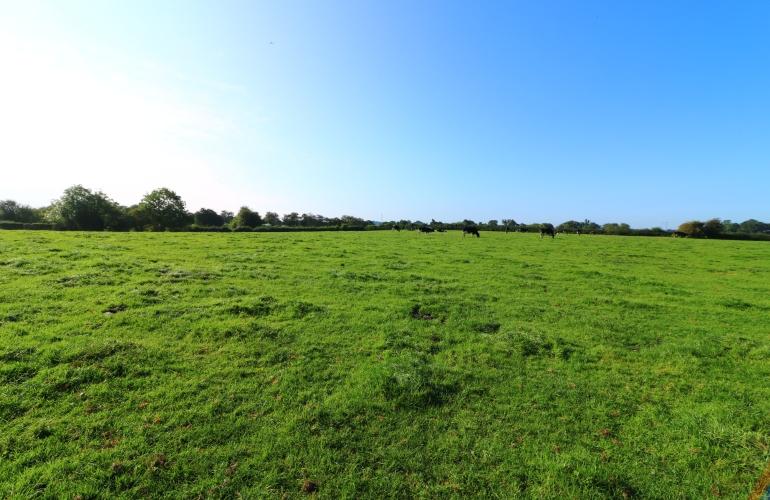 cheshire-farm-wedding-venue